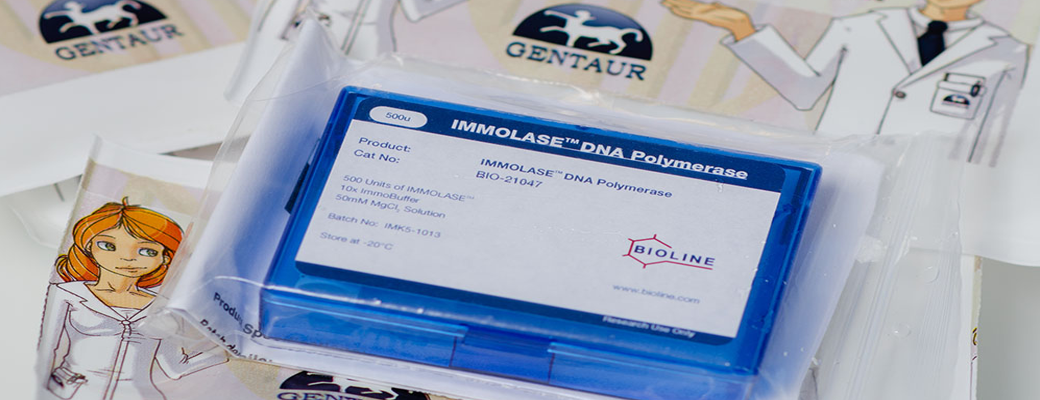 IMMOLASE DNA Polymerase