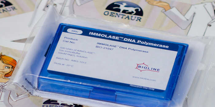 IMMOLASE™ DNA Polymerase
